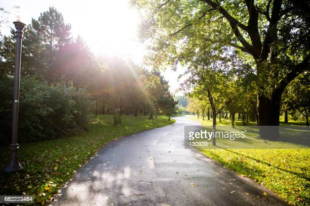 morning walk in the park - public park stock photos and pictures