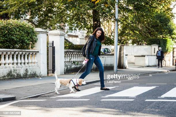 morning walk with dog in london - london breed stock pictures, royalty-free photos & images