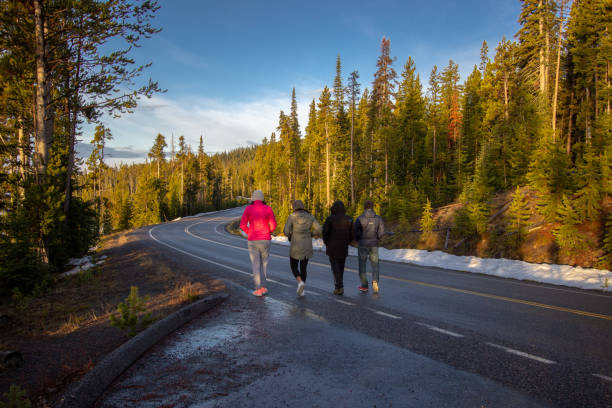 Morning walkers, Yellowstone National Park, Wyoming