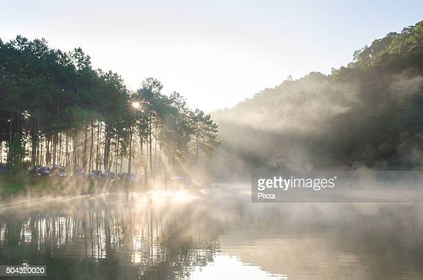 Morning winter in lake nation park Thailand