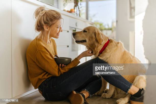 morning with my dog in our kitchen - oats food stock pictures, royalty-free photos & images