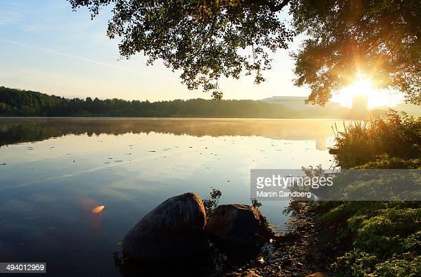 Morninglight on the lake