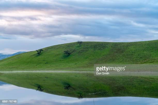 morninig reflection - don smith stock pictures, royalty-free photos & images