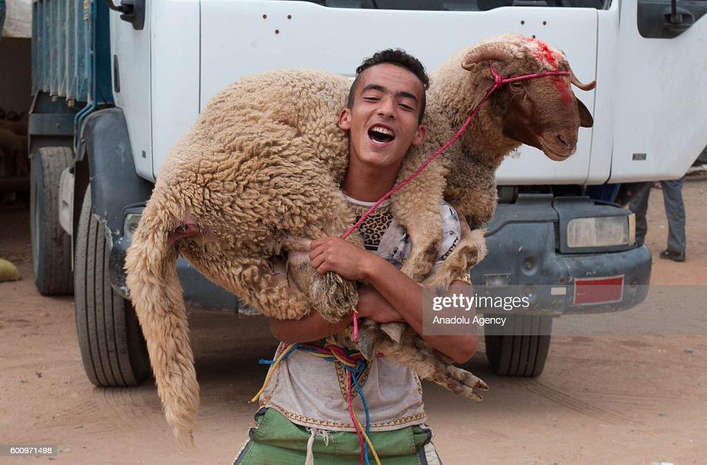 Cool Yemen eid al-fitr feast - moroccan-boy-carries-a-ram-for-the-upcoming-muslim-sacrificial-eid-picture-id600971498?k\u003d6\u0026m\u003d600971498\u0026s\u003d612x612\u0026w\u003d0\u0026h\u003dVvVJDyauKwefVHUHT6E04G_TYP33MXYPyssALD6H4tc\u003d  Trends_582810 .com/photos/moroccan-boy-carries-a-ram-for-the-upcoming-muslim-sacrificial-eid-picture-id600971498?k\u003d6\u0026m\u003d600971498\u0026s\u003d612x612\u0026w\u003d0\u0026h\u003dVvVJDyauKwefVHUHT6E04G_TYP33MXYPyssALD6H4tc\u003d