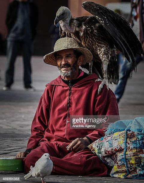 Moroccan man with a vulture at the Djemaa elFna Square on December 4 2013 in Marrakech Morocco