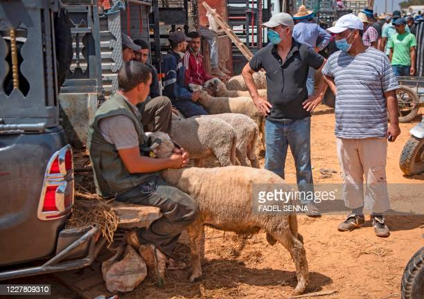 Moroccans buy sacrificial animals ahead of the Muslim festival of Eid alAdha at a livestock market in the coastal city of Skhirat around 20...