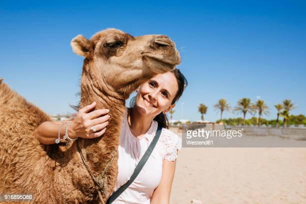 morocco, tanger, portrait of smiling woman with baby camel on the beach - camello fotografías e imágenes de stock