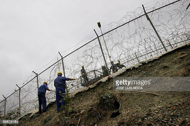 Workers remove items of clothing that are left on the barbed wire fences following a mass break in overnight by African immigrants into the Spanish...