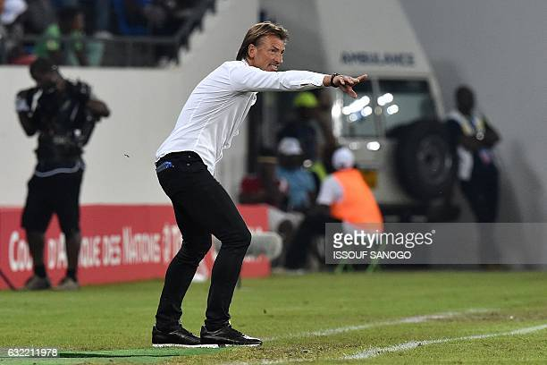Morocco's French coach Herve Renard reacts during the 2017 Africa Cup of Nations group C football match between Morocco and Togo in Oyem on January...