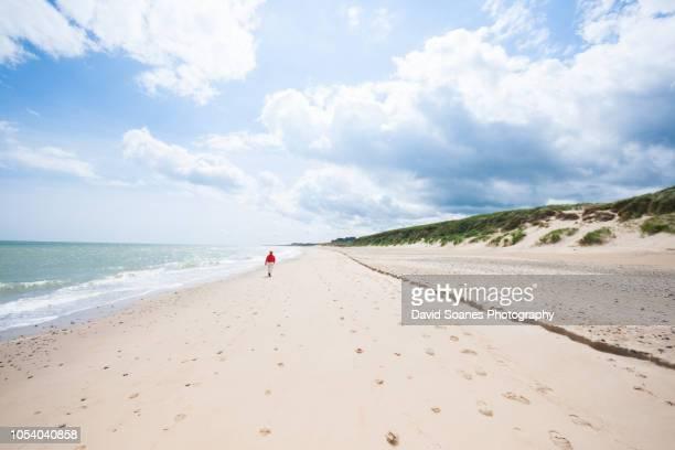 morriscastle strand in wexford, ireland - ウェックスフォード州 ストックフォトと画像