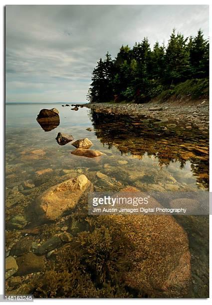 Morrison Head Island shoreline in Cape Breton