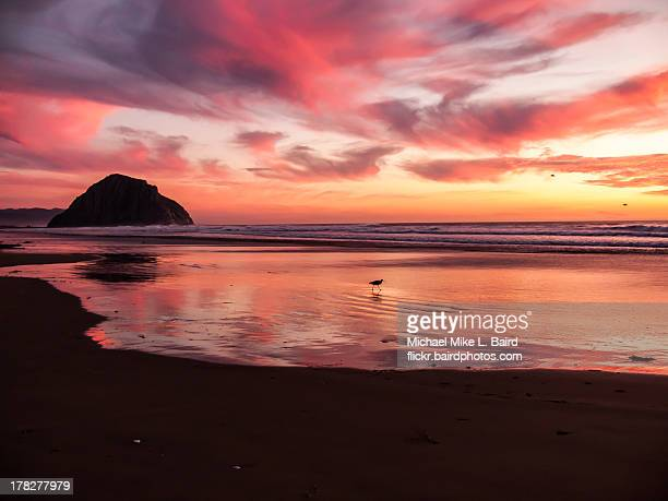 morro bay ca sunset at morro rock - bay of water stock pictures, royalty-free photos & images