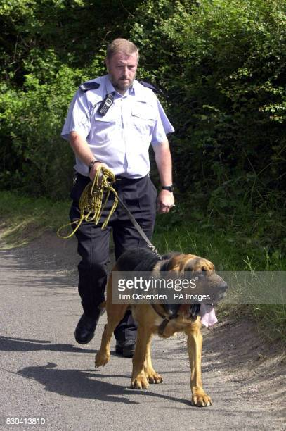 Morse the Bloodhound has been brought in by police to help the search for 8yearold Sarah Payne from Surrey who vanished near her grandparents' home...