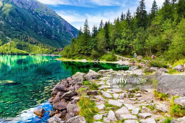 morskie oko pond in the tatra mountains, poland - lakeshore stock pictures, royalty-free photos & images