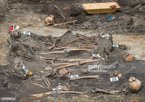 Mortal remains of Soviet soldiers who fought in World War II lay in an unearthed mass grave in Alt Tucheband in the Oderbruch region near the Polish...