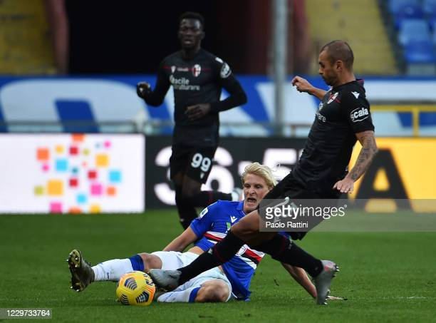 Morten Thorsby of UC Samdoria battle for the ball with Danilo of Bologna FC during the Serie A match between UC Sampdoria and Bologna FC at Stadio...