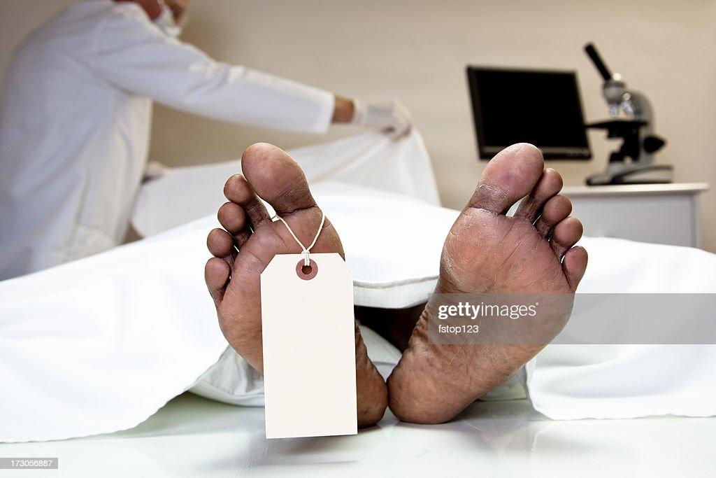 Mortician, coroner covering dead body in morgue. Feet, toe tag. : Stock Photo