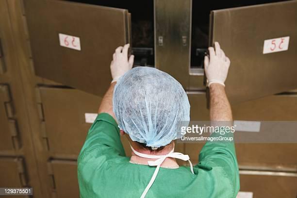 Mortuary technician opening doors to mortuary refrigerator