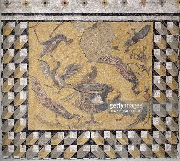 Mosaic depicting peacocks and birds around a cantaro from Daphne Egyptian civilisation Roman Empire 3rd century Paris Musée Du Louvre