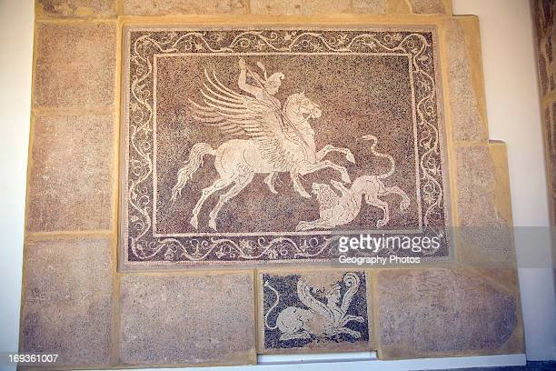 Mosaic on wall Archaeological museum Rhodes Greece