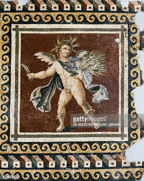 Mosaic showing a putto Mosaic of the four seasons from Harbiye Antioch Archaeological Museum Turkey Roman civilisation 2nd century AD