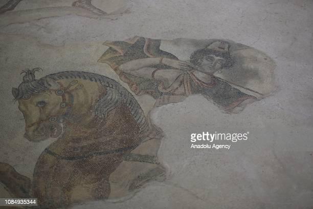 Mosaic shows Amazons at Haleplibahce Mosaic Museum at Sanliurfa museum complex in Sanliurfa, Turkey on January 18, 2019.