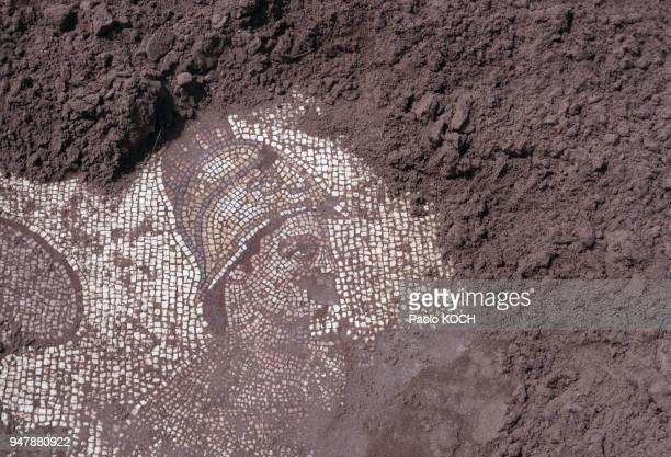 Mosaïque de la cité grecque d'Apollonie d'Illyrie en Albanie en 1969