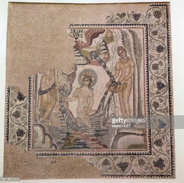 Mosaïque représentant la déesse Artémis surprise par Actéon au musée de Timgad Algérie