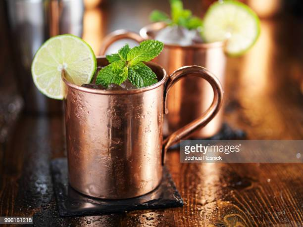 moscow mule cocktail in copper cup with mint and lime garnish - mula imagens e fotografias de stock