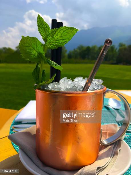 moscow mule cocktail in copper mug - mula imagens e fotografias de stock