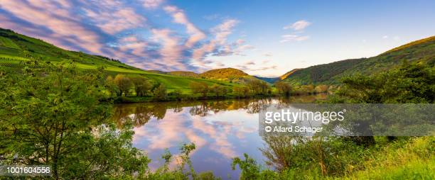 mosel river germany at sunset - moseltal stock-fotos und bilder