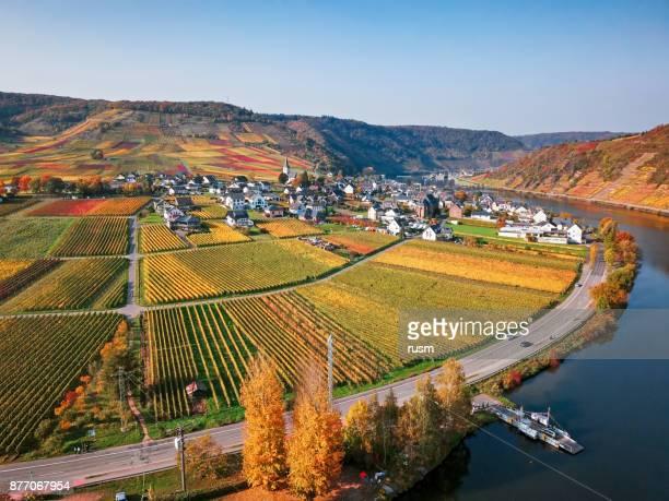 Vignobles de la vallée de Mosel près de Beilstein recourent à l'automne, Rhénanie-Palatinat, Allemagne.