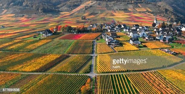 de wijngaarden van de vallei van het mosel in de buurt van beilstein resort op herfst, rijnland-palts, en maakt. - moselle stockfoto's en -beelden