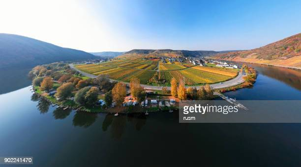 mosel valley vineyards near beilstein resort at autumn, rhineland-palatinate, germany. - moselle stock pictures, royalty-free photos & images