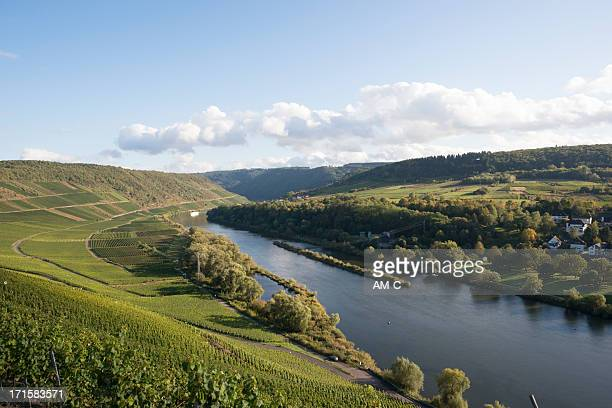 mosel vally, marienburg, puenderich, zell, germany - moselle france stock pictures, royalty-free photos & images