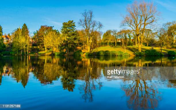 moseley park and pool in spring - west midlands stock pictures, royalty-free photos & images