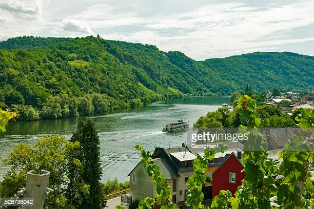 moselle countryside - moselle france stock pictures, royalty-free photos & images