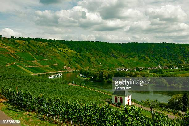 Moselle countryside