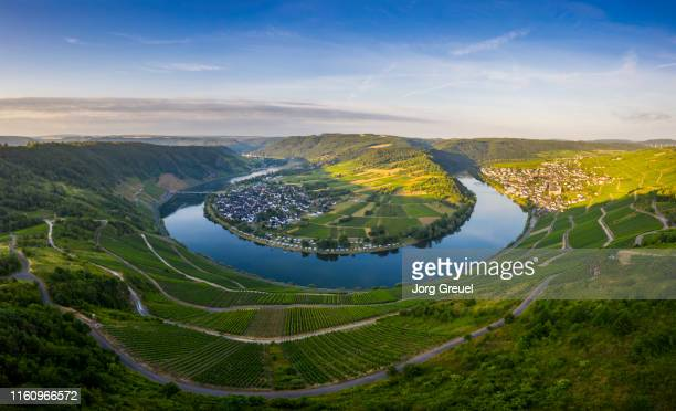 moselle river at sunrise - village stock pictures, royalty-free photos & images