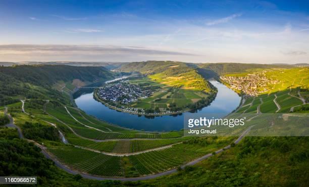moselle river at sunrise - ラインラント=プファルツ州 ストックフォトと画像