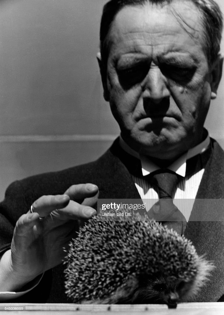 Moser, Hans - Actor, Austria - *02.08.1880-+ Scene from the movie 'Das Ekel' with a hedgehog Directed by: Hans Deppe Germany 1939 Produced by: Tobis Filmkunst - Photographer: Hanns Hubmann Vintage property of ullstein bild