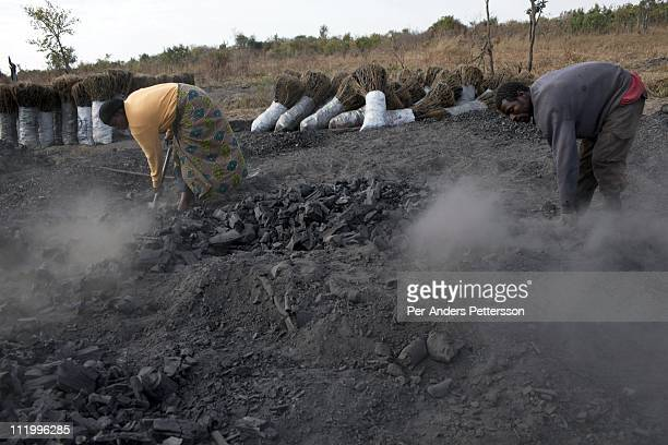 Moses Daka age 46 collects charcoal with a woman at a charcoal production site in a rural area on June 17 called MbaiMbai about 40 kilometers outside...