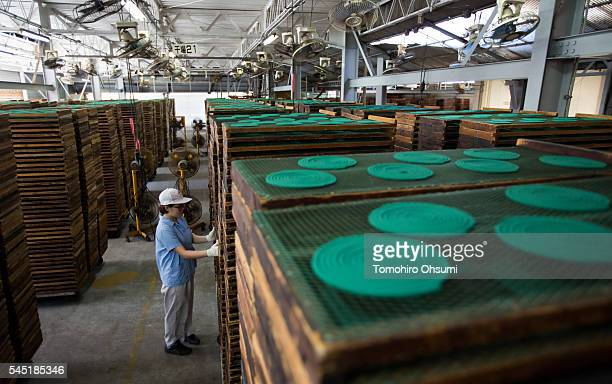 Mosquito coils are dried in a drying room at the Kishu Factory of Dainihon Jochugiku Co. Ltd. On July 6, 2016 in Arita, Japan. Japanese insect...