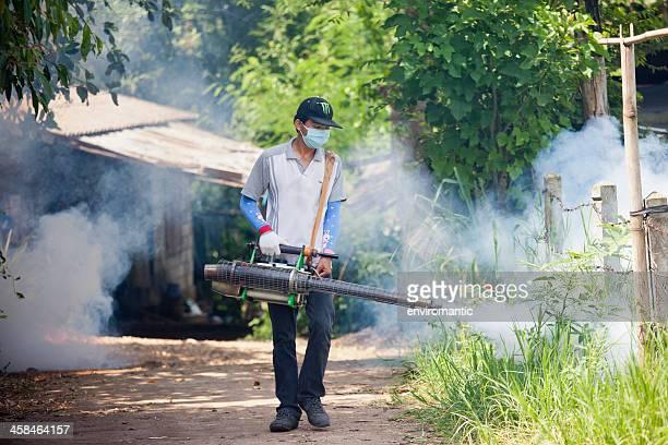 Mosquito erradicação.