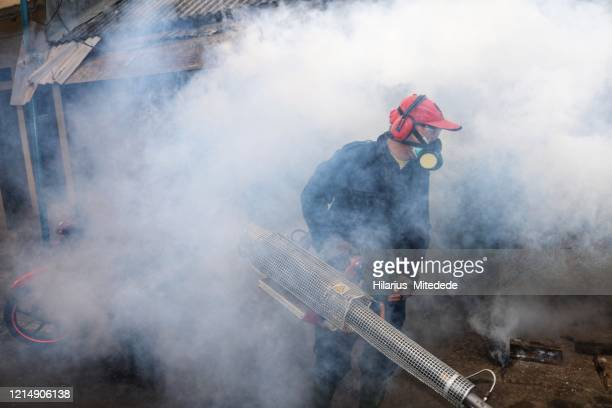 mosquito fogging activity - malaria parasite stock pictures, royalty-free photos & images