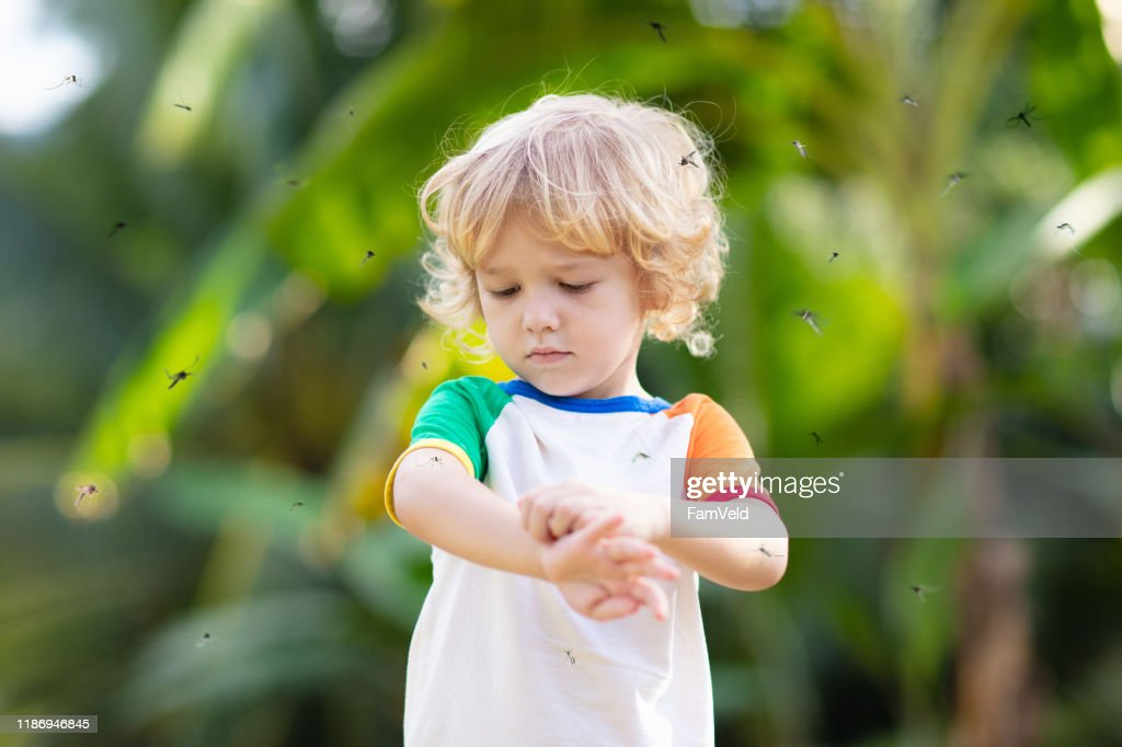 Mosquito on kids skin. Insect bite repellent. : Stock Photo