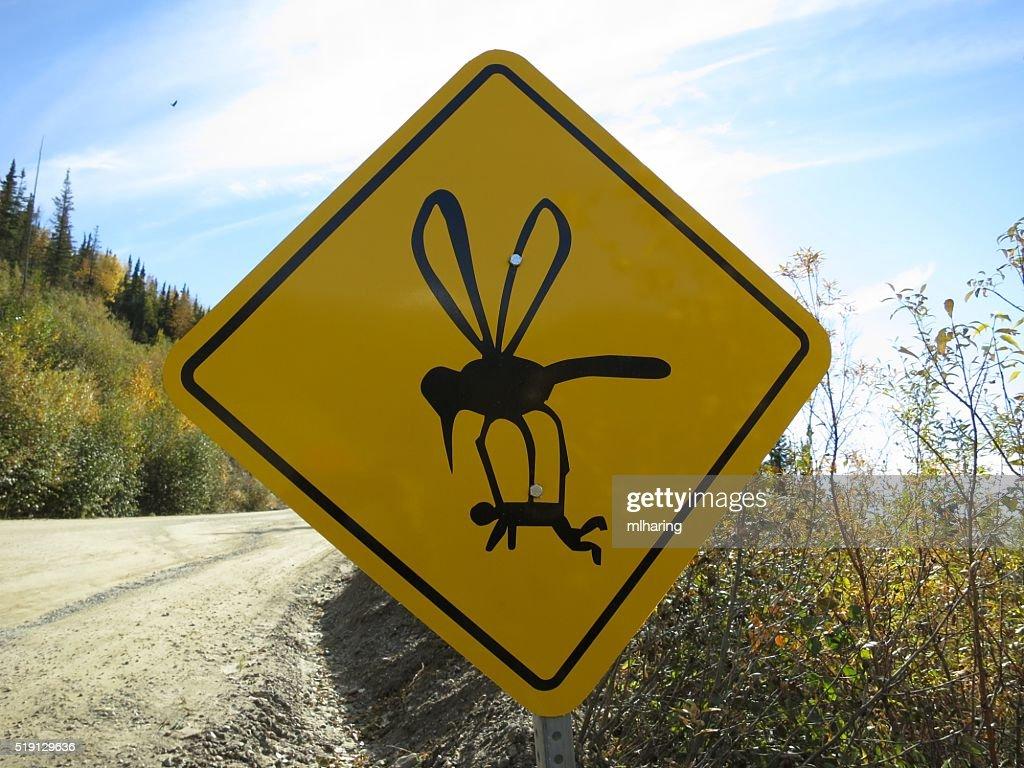Mosquito Sign : Stock Photo