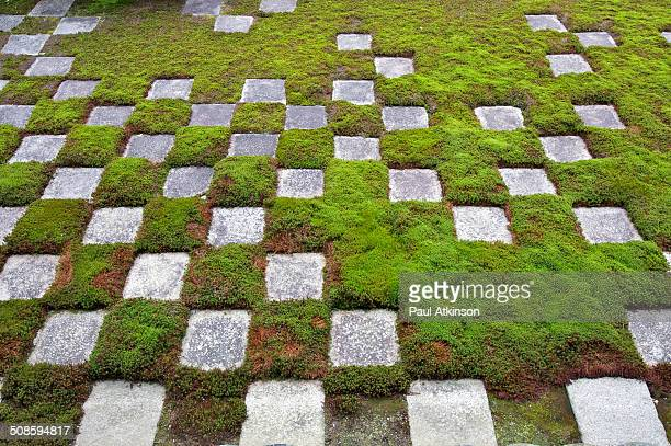 Moss and stone garden in a temple in Kyoto, Japan.