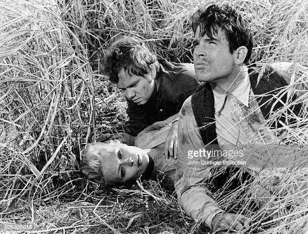 CW Moss Bonnie Parker and Clyde Barrow hiding in a field while on the run in the 1967 film Bonnie and Clyde