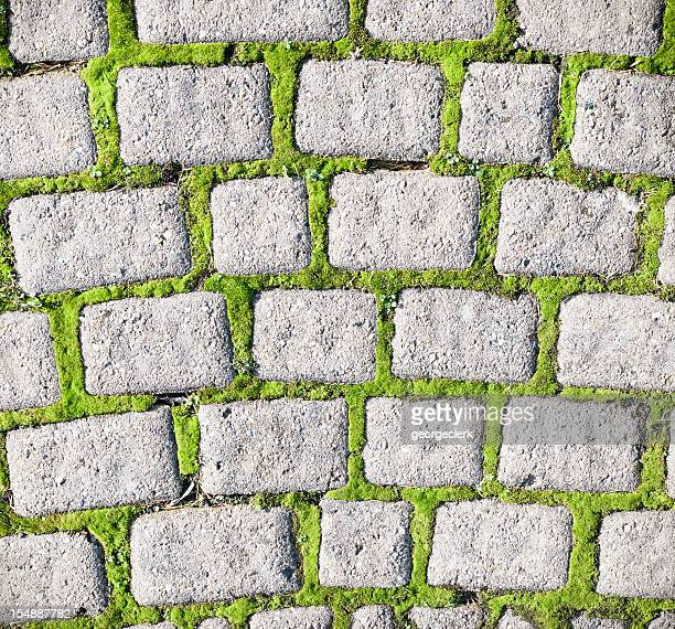 moss cobble pattern - paving stone stock pictures, royalty-free photos & images